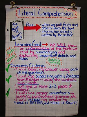 Learning goal and success criteria for novel study.  Students put it into their books also.