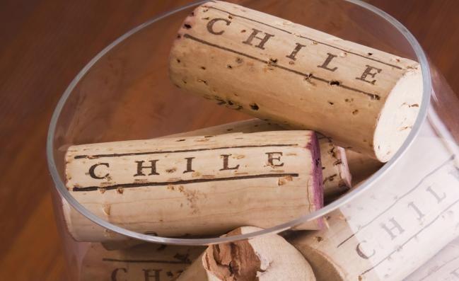 5 vinos chilenos para regalar - IMujer
