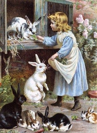 'Feeding The Rabbits'.... this was probably me in a previous life... and nothing has changed :-D
