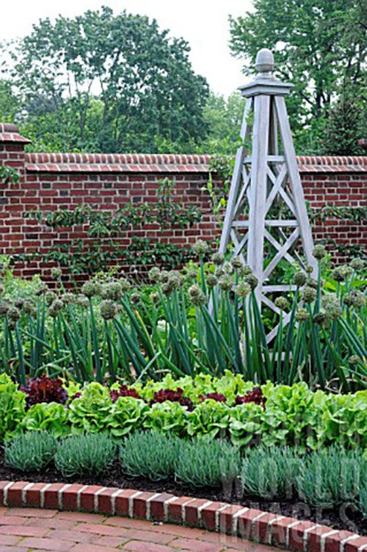 Formal vegetable garden with structure gardens flowers for Formal vegetable garden design