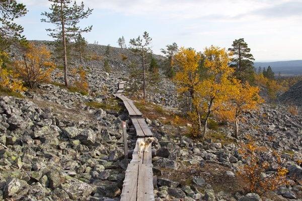 Finland, Ylläs