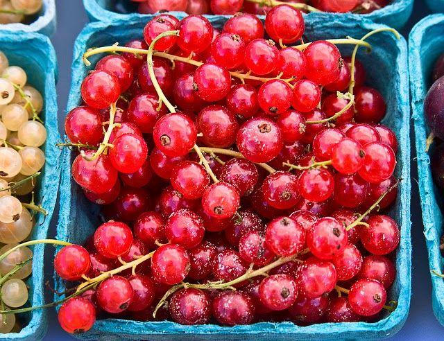 Czerwone porzeczki zaleca się spożywać w czasie przeziębienia, grypy czy anginy. Można w nich znaleźć witaminę C, prowitaminę A, sole mineralne, cukry i kwasy organiczne.  Zdjęcie pochodzi ze strony: https://www.flickr.com/photos/calliope/6005103075/in/photostream/