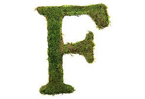 "24""H Live Moss Covered Letter, F from The Magnolia Company at One Kings Lane"