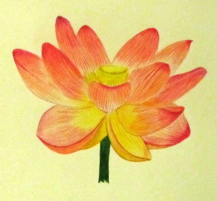 Dibujo de una Flor a colores.