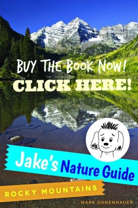 NEW BOOK!   Nature Guidebook to Rocky Mountains - Great for visitors and locals.