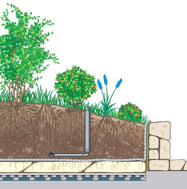 tetto verde, tetti verdi, giardini pensili, tetto, giardino pensile, tetto giardino, tetto verde estensivo, pensili, verde pensile, greenroofs