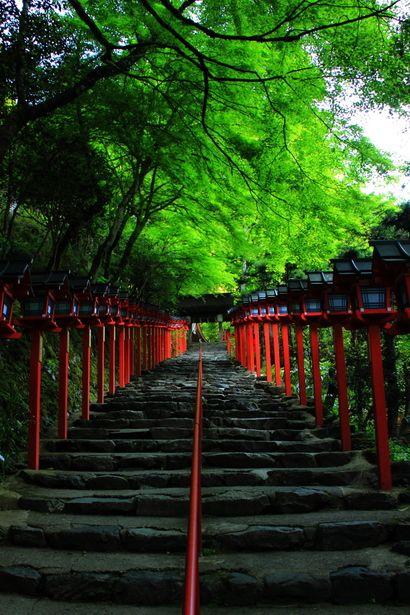 Fresh green of Kibune Shrine, Kyoto, Japan
