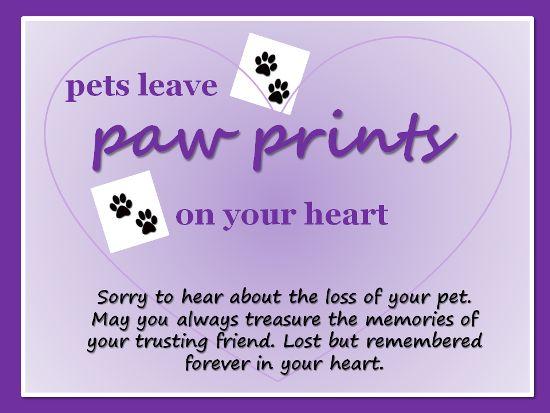 Sympathy dog loss quotes - photo#48