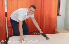 Domestic Cleaning Honor Oak Park