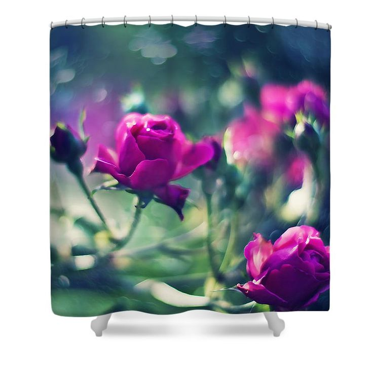 Love Shower Curtain featuring the photograph Beautiful Fuchsia Roses by Oksana Ariskina  Tender Fuchsia Roses over blurred bokeh dark green backdrop. Available as posters, greeting cards, phone cases, throw pillows, framed fine art prints, metal, acrylic or canvas prints, shower curtains, duvet covers, tote bags and mugs  with my fine art photography online: www.oksana-ariskina.pixels.com