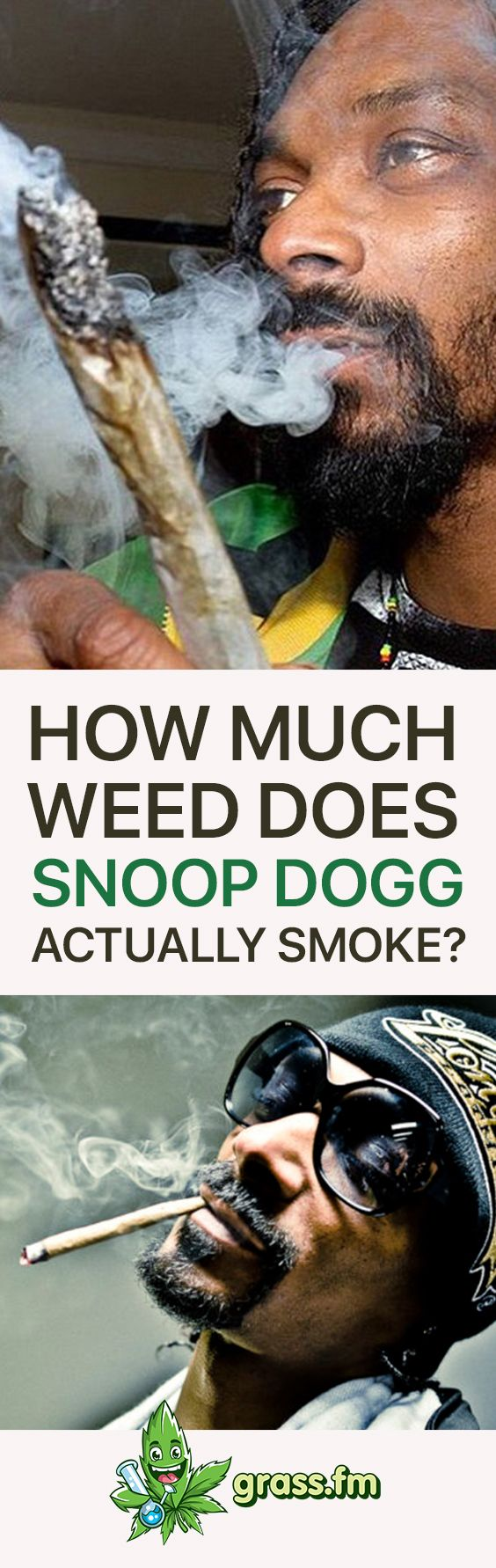 Click here to learn how much weed snoop dogg ACTUALLY smokes #marijuana #weed #cannabis #cannabiscommunity