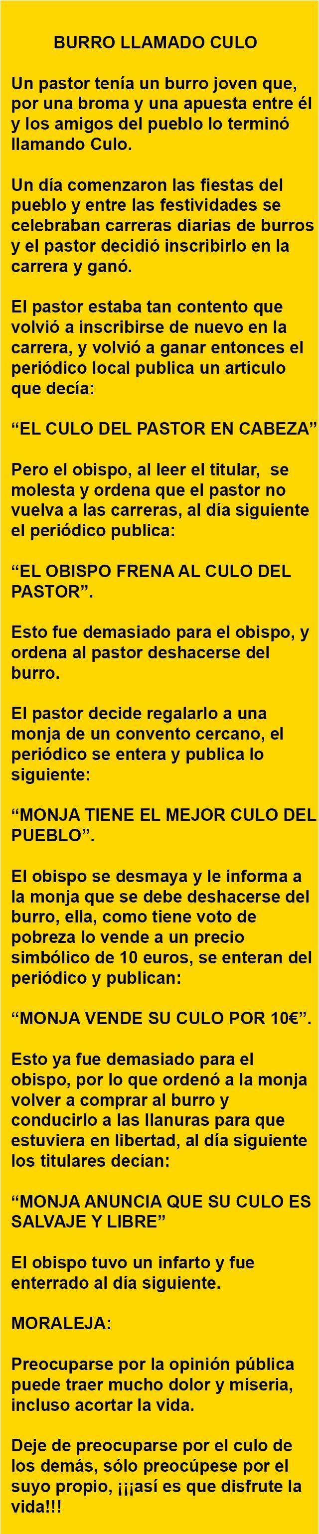 BURRO LLAMADO CULO… | AldeaViral