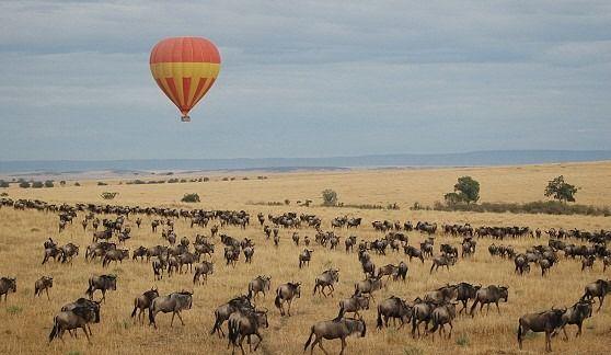 7 Days Best of Kenya Holiday Safaris: ...