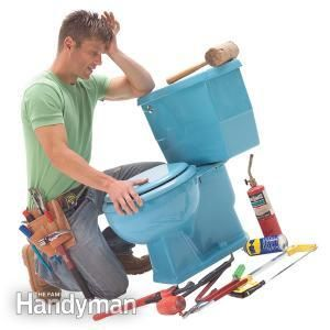 Toilet Seat Replacement - Article | The Family Handyman