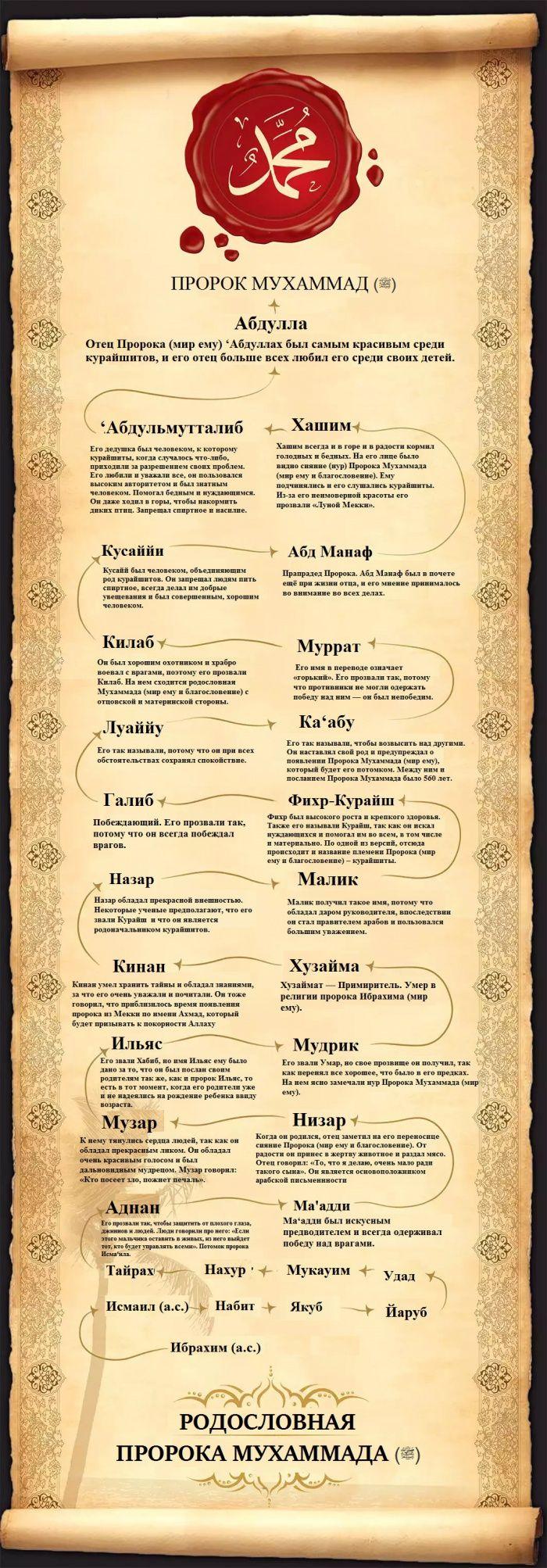 ИНФОГРАФИКА: Родословная Пророка Мухаммада (ﷺ) начиная от пророка Ибрахима (а.с.)