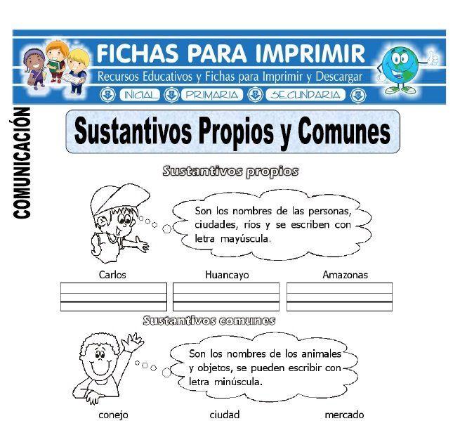Sustantivos Propios Y Comunes Para Primero De Primaria Nombres Propios Y Comunes Ejercicios De Sustantivos Sustantivos Y Adjetivos