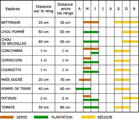 Les l gumes calendrier de culture jardin potager for Calendrier jardin potager