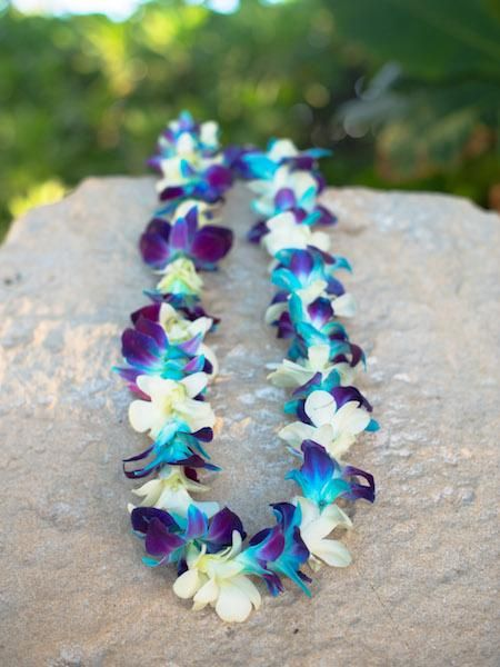 Dyed Blue on Bom + White Dendrobium Orchid Lei
