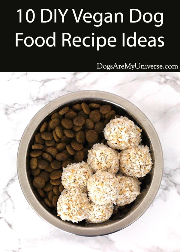 Make Your Own Vegan Dog Food Vegan Dog Food Dog Food Recipes