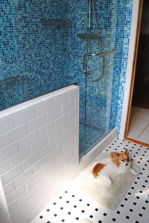 New shower.. and bath mat warmer, AKA our dog ;-)  | by gum, by golly! #retro #bathroom #renovation #midcentury #modern #modwalls #papillon #dog