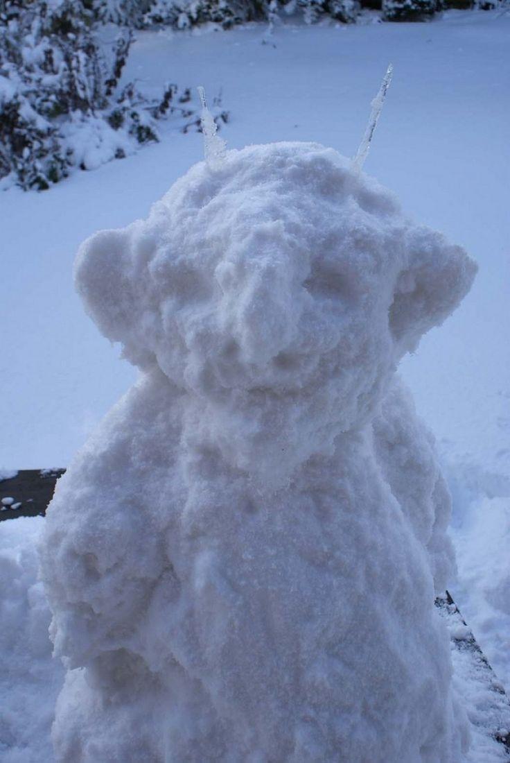snow troll 2009 Photo - Visual Hunt