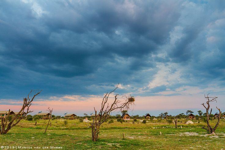 Elephant Sands campsite by Marnus van der Merwe on 500px