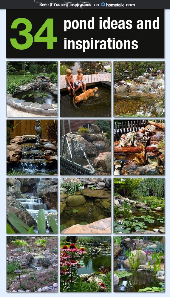 34 Pond Ideas and Inspiration