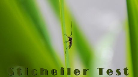 Der Sommer kommt und mit ihm die Mücken... Was hilft gegen Mückenstiche? Wir haben Stichheiler getestet... http://www.geocachingundoutdoor.de/outdoor-ausruestung/stichheiler-test-was-hilft-gegen-mueckenstiche-wir-verraten-es