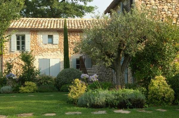 Mas, jardin, olivier, bordure