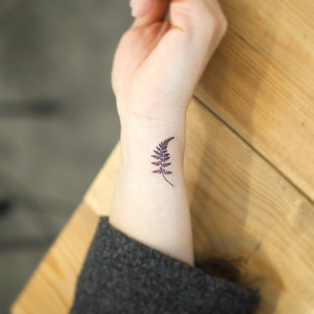 Fern tattoo. Hand or wrist could be cute