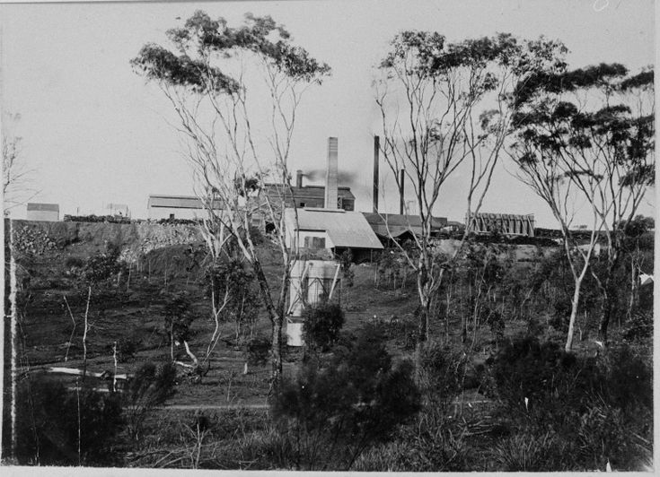 026197PD: Smelters near Ravensthorpe, 1908 http://encore.slwa.wa.gov.au/iii/encore/record/C__Rb3793132?lang=eng