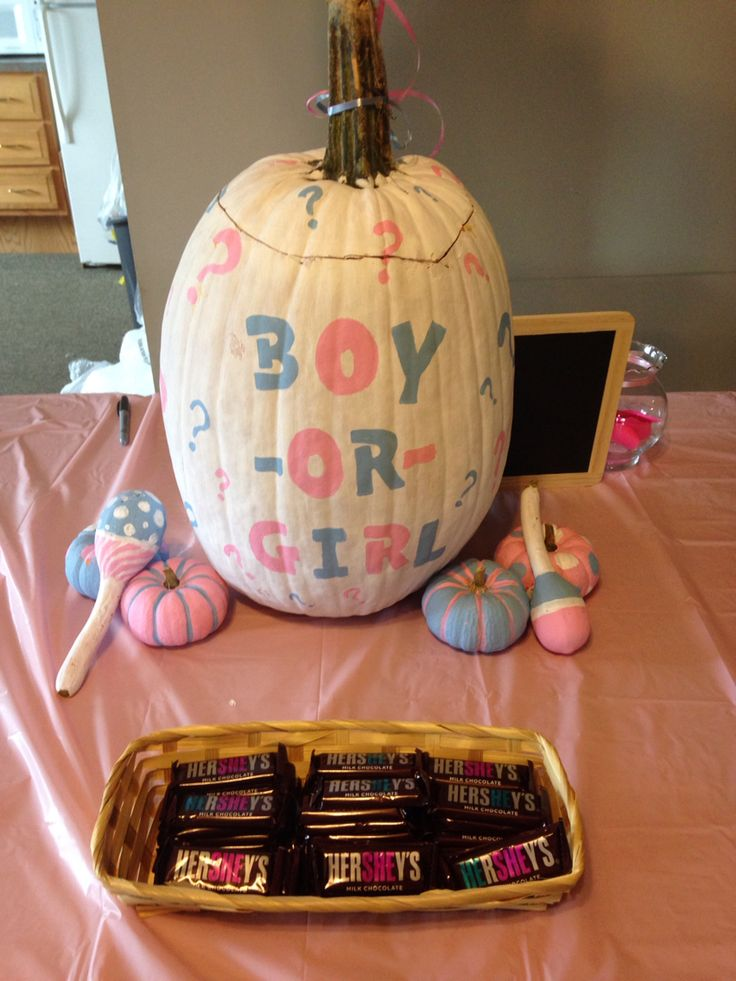 Pumpkin gender reveal..ultrasound is in the pumpkin in  the goo!