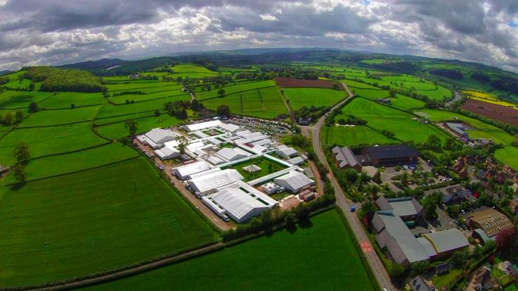from @TheWyeSkyEye -   This land is your land.   And the grass really is greener here   xx