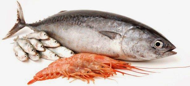 Συμβουλές για τα Ψάρια & Θαλασσινά