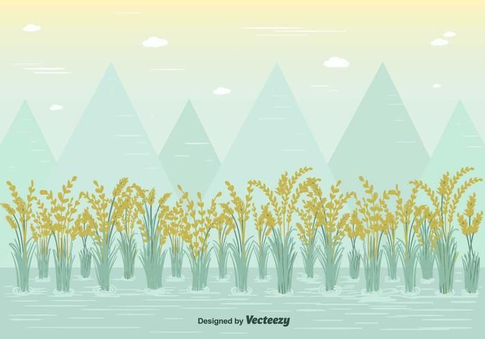 Free Rice Field Vector - https://www.welovesolo.com/free-rice-field-vector/?utm_source=PN&utm_medium=welovesolo59%40gmail.com&utm_campaign=SNAP%2Bfrom%2BWeLoveSoLo