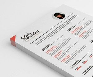 basic-resume-top
