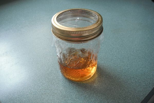 fruit flies vinegar ninja fruit