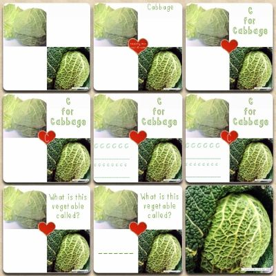 We've created a collection of printable cabbage nutrition charts to be used as worksheets or to stick in a food journal, whatever takes your fancy! www.creativelypaleo.com