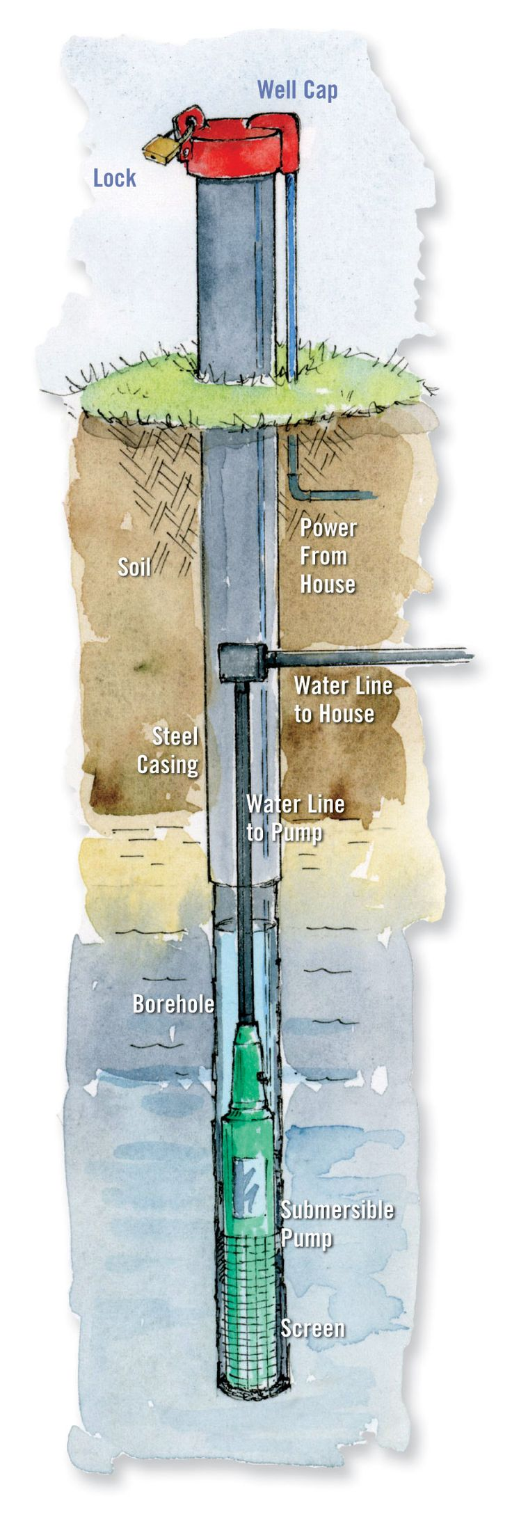 Long and narrow, drilled wells are the only option for getting water out of bedrock. Learn more about well construction and regulations in your area from your local health department. Illustration by Elayne Sears. From MOTHER EARTH NEWS magazine.