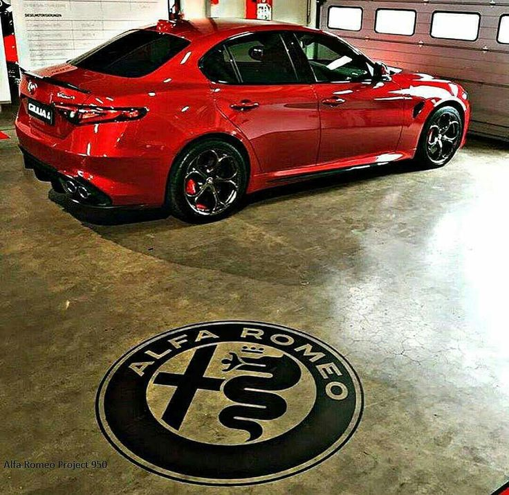 423 Best Images About Alfa Romeo On Pinterest
