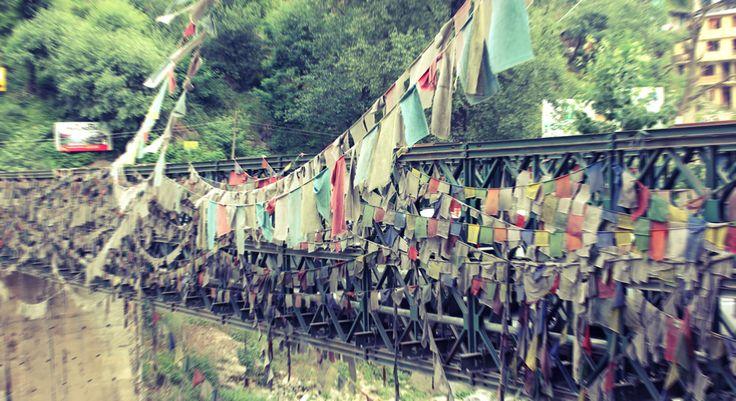 Prayer Flags by Aubrie Jesersky - Manali - Himalayas