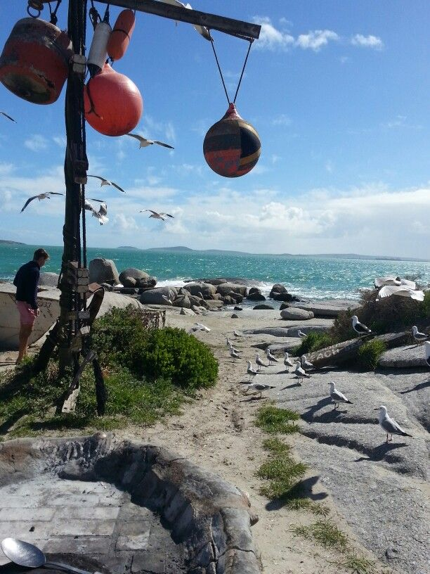 Strandloper restaurant, my favourite place #langebaan South Africa West Coast