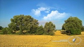 Textures Summer countryside landscape 20803 | Textures - BACKGROUNDS & LANDSCAPES - NATURE - Countrysides & Hills | Sketchuptexture
