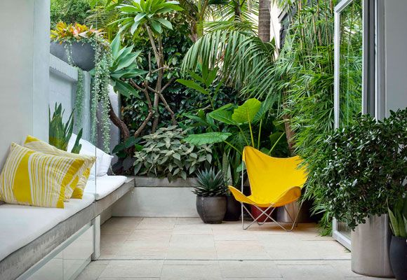 Lush courtyard: Gardens Ideas, Small Gardens Plans, Decor Ideas, Small Yard, Small Courtyards, Google Search, Tropical Gardens, Yellow Chairs, It Works