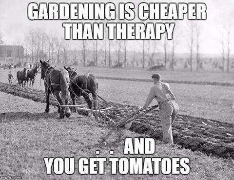 To Plant A Garden Is To Believe In Tomorrow http://bit.ly/1T7vLFQ http://etsy.me/29G042Y #gardening is cheaper than #therapy