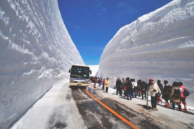 tateyama 立山・雪の大谷ウォークの情報は富山県観光公式サイト「とやま観光ナビ」で。