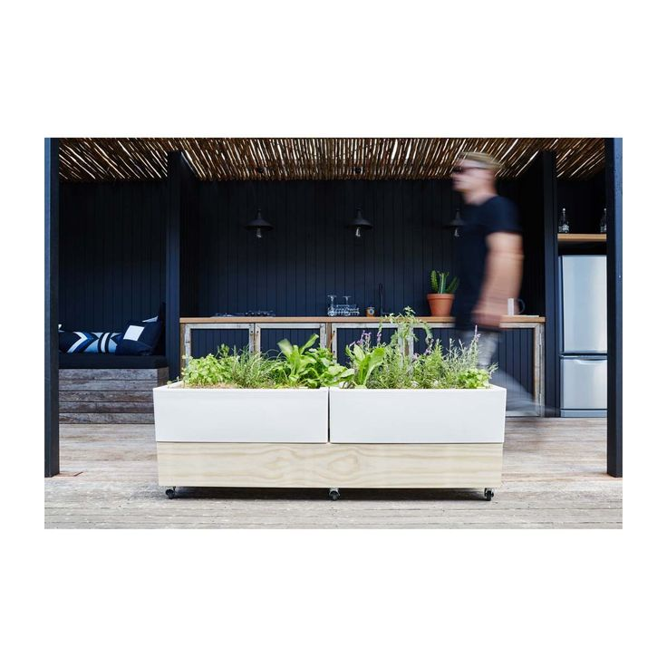 Glowpear - Cafe Planter - Modern Pots & Planters Buy Your Homewares Online or In Store!