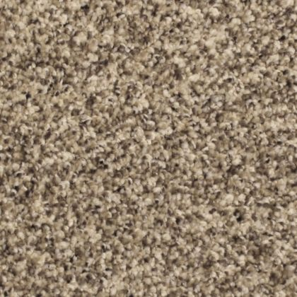 Stainmaster Nylon carpet in 'Epic'