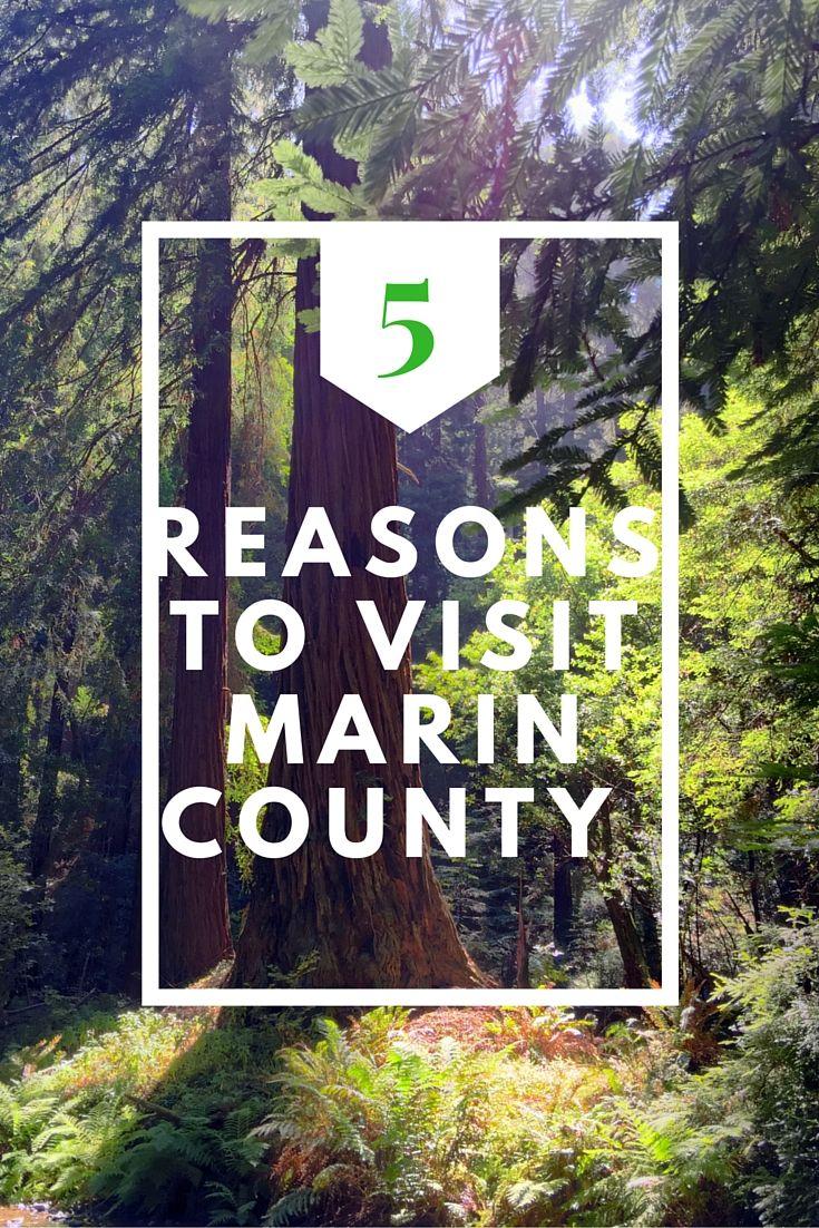5 Reasons to Visit Marin County, California, USA