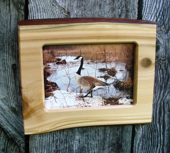 wood picture frame, rustic wall decor, wooden photo frame, live edge wood, 5 X 7 frame, natural wood, handmade frame, country primitive